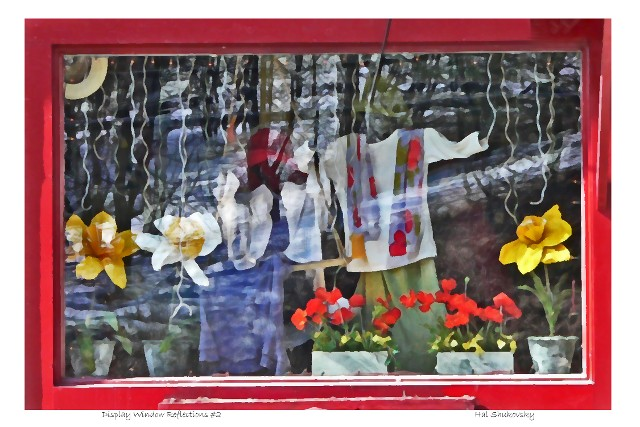 Display Window Reflections #2
